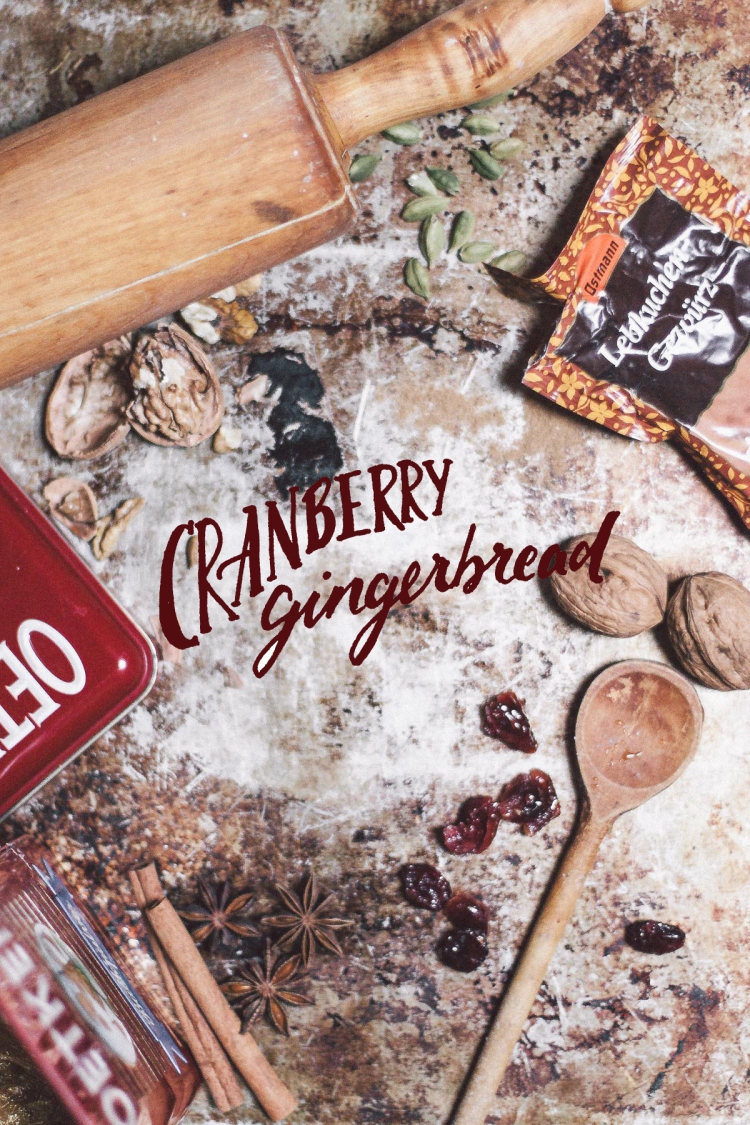 Christmas, Germany, Biscuits, Gingerbread, Honey, Sugar, Cranberries, Walnuts, Lebkuchengewürz, All spice, Photography, Daniel Farò, Calligraphy, Hand Lettering, Recipe, Gioia De Antoniis