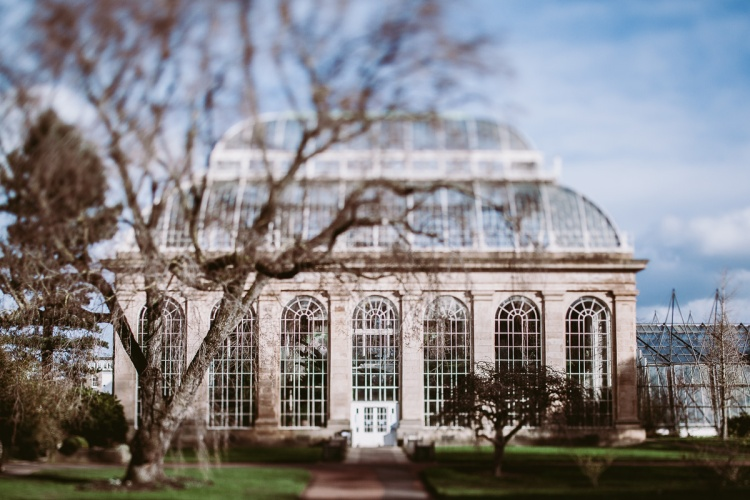 Edinburgh, Botanical Garden, Tilt Shift, Scotland, UK, Winter
